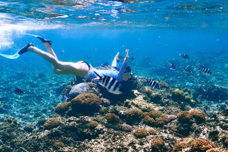 3 Ways to Make Your Scuba Travels Sustainable