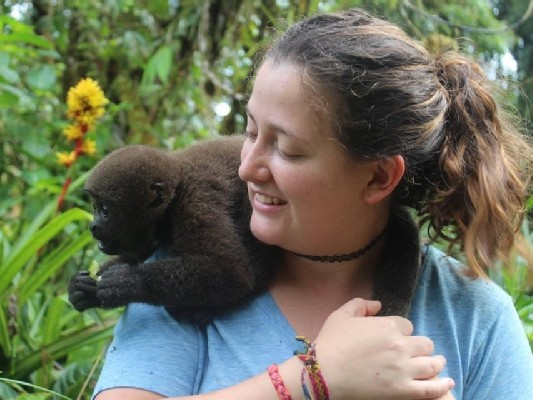 merazonia volunteer opportunities abroad holiday animals monkeys ecuador south america jungle amazon rainforest