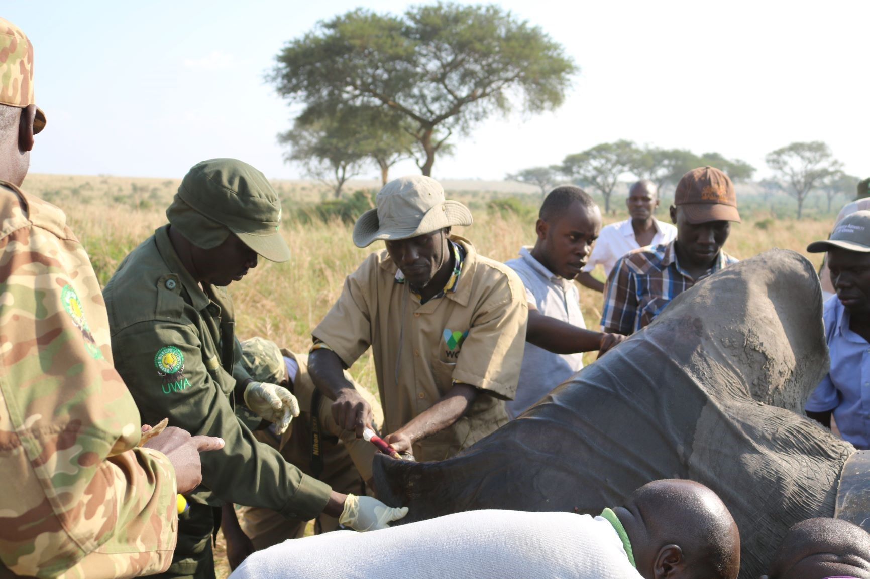 Protecting Wildlife in Uganda – Interview With EWCO