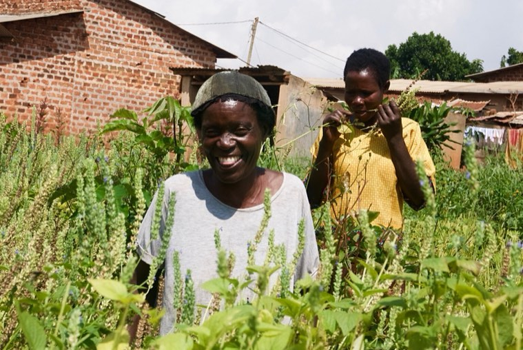 Thinking Outside the Box – the Incredible Journey of Eco-Agric Uganda